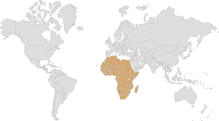 Weltkarte_JACDEC-REGION-AF2-768